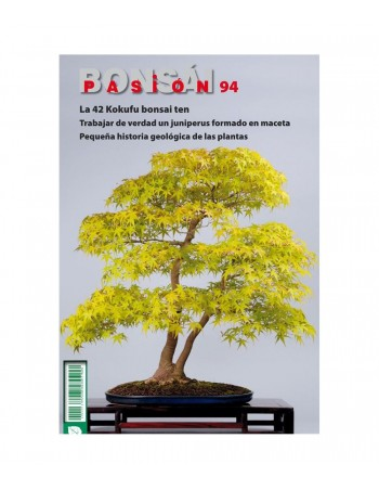Revista nº94 La 42 Kokofu bonsai ten bonsai pasion